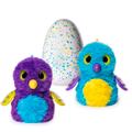 Игрушки яйца Hatchimals