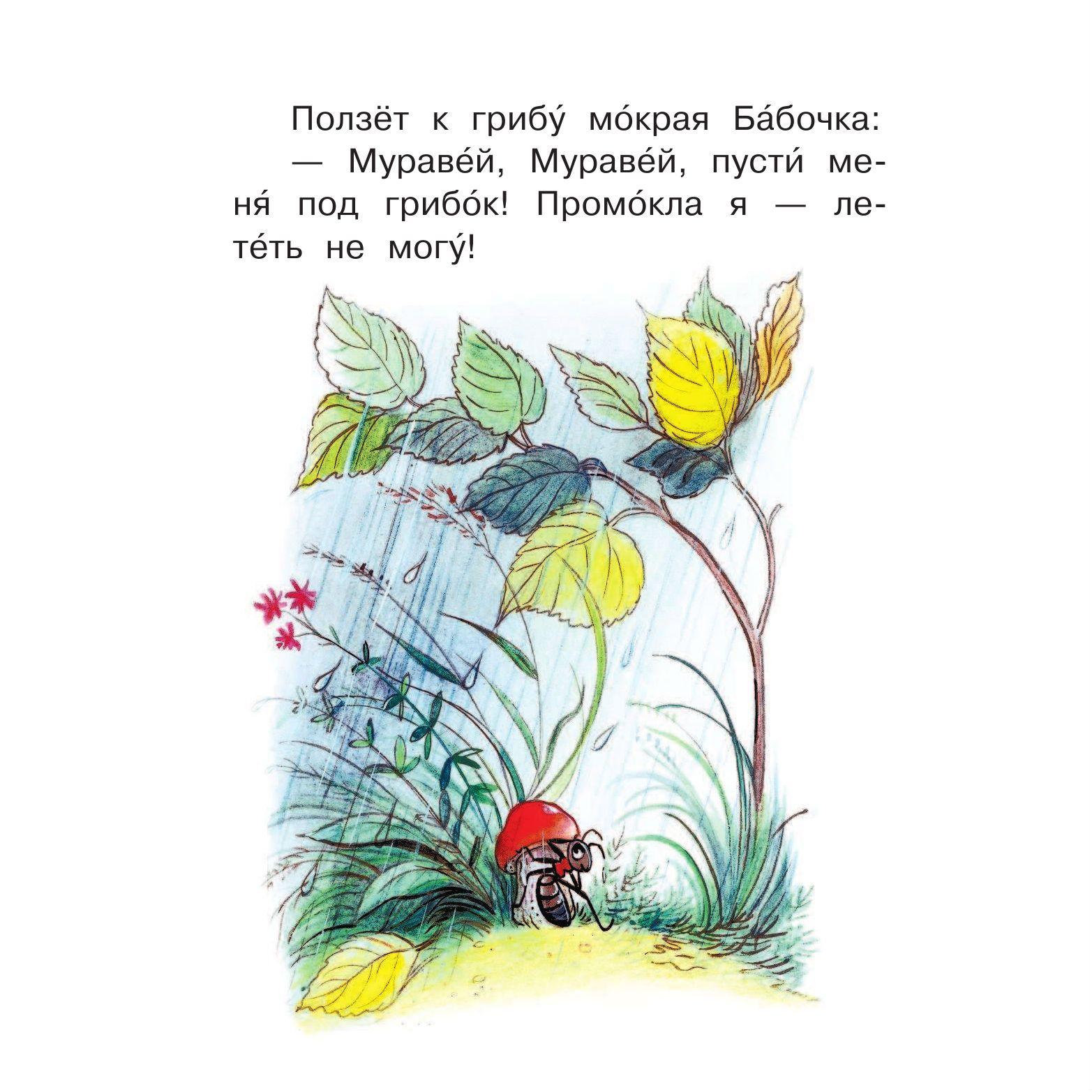 Книга я читаю сам сказки и картинки в сутеев