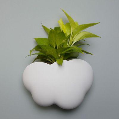 Горшок cloud